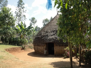 a rural dwelling, typical of the Sidamo region