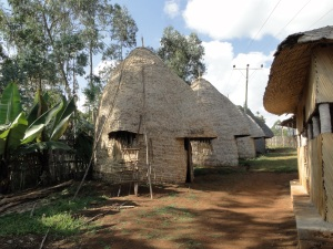 Cone-shaped Dorzé houses in the Arba Minch region