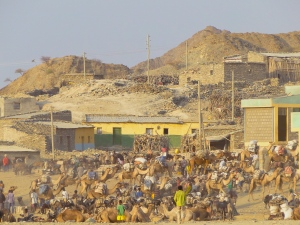 The salt market in Berhale in Afar country